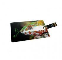 USB Kredi Kart 3.0